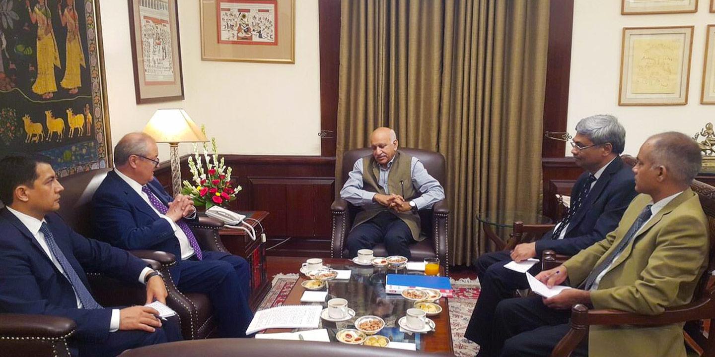 Генеральный директор Национального музея Индии Будха Рашми Мани