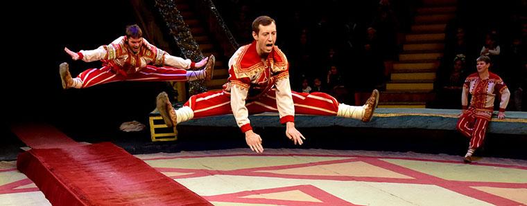 цирк-Куда-пойти-27-и-28-января-